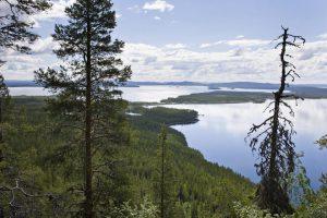 Utsikt från berget Átjek vid Parkijaur.
